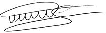 signature perso SV_2